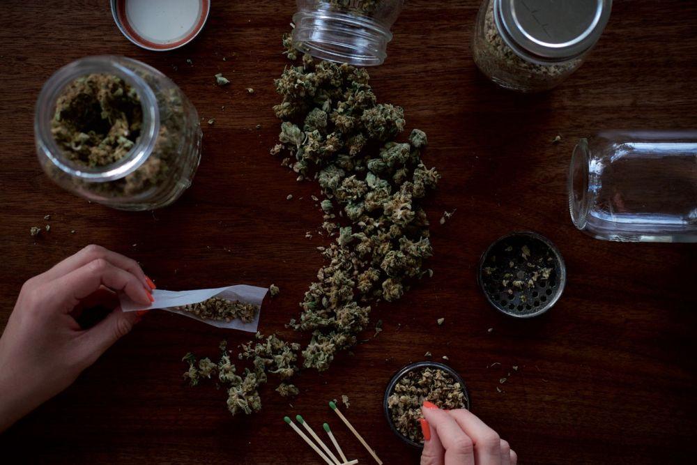 Un incontro sugli aspetti legali della cannabis e della cannabis light